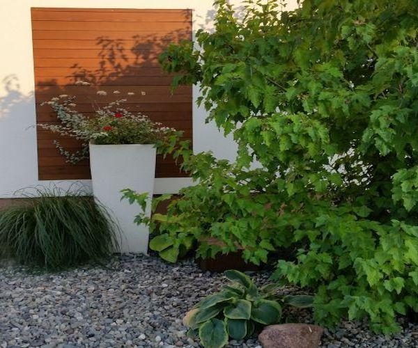 Jarosław ogród frontowy - ceramiczna donica ozdobna z roślinami jednorocznymi