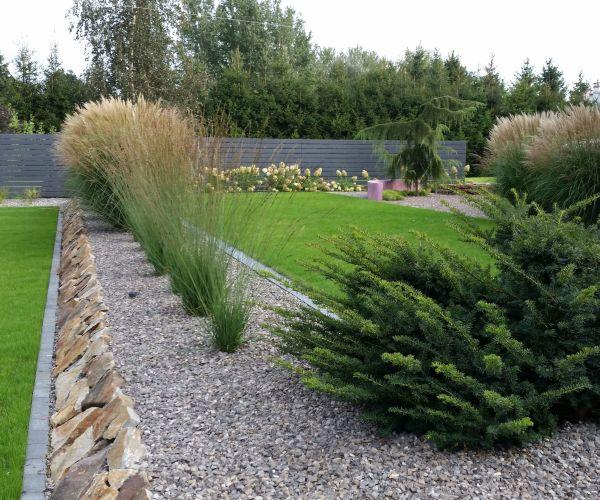 Minimalistyczny ogród, żwirowa rabata wypełniona trawami ozdobnymi i hortensją bukietową
