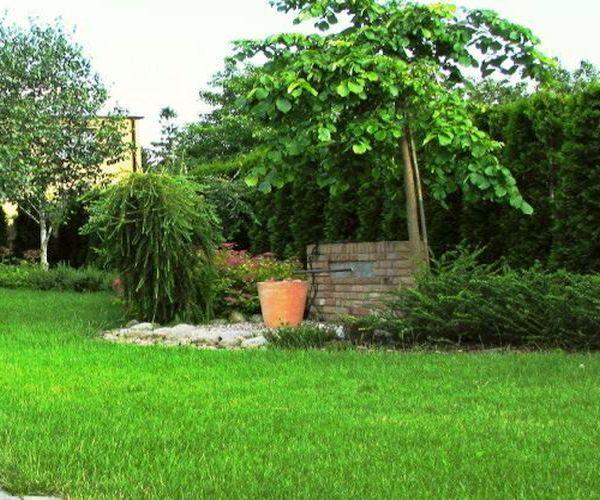 Ozdobny murek z cegły otoczony bujną roślinnością