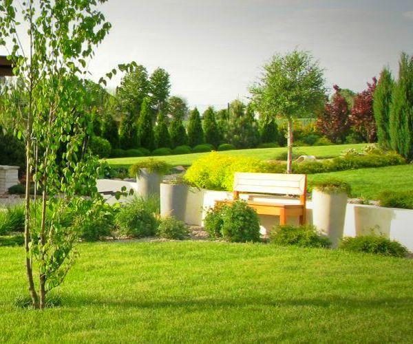 Założony ogród - ozdobny murek oporowy i drzewa rosnące w okolicy