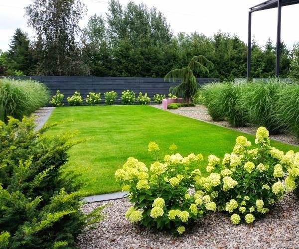 Kwitnące hortensje, trawy ozdobne i jałowiec Horstmann